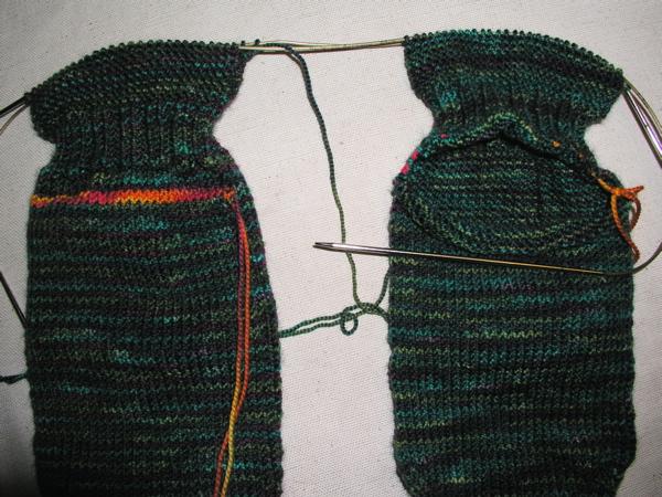 sockson2back.jpg
